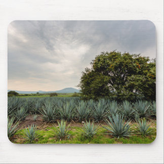 Landscape With Blue Agave Mouse Pad