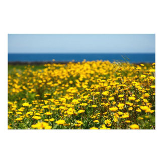 Landscape with daisies stationery design