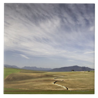 Landscape with wheat fields, Grabouw, Western Large Square Tile