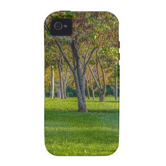 Landscapes Vibe iPhone 4 Case