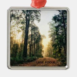 Lane Poole Reserve, Western Australia Metal Ornament