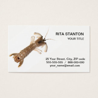 Langoustine Business Card