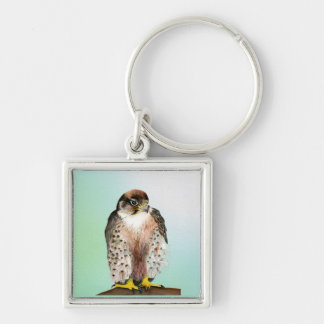 Lanner Falcon Bird Watercolor Falco biarmicus Key Ring