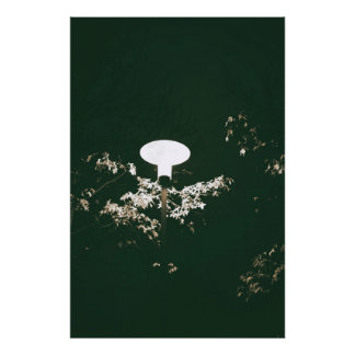 Lantern at the night photo print