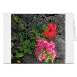 Lanzarote Lava Rock with Flowers Card