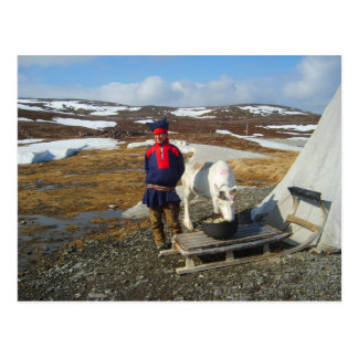 Lapland,  Sámi settlement with tent and cow Postcard