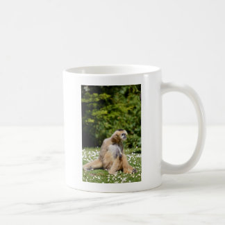 Lar gibbon sitting on grass coffee mug