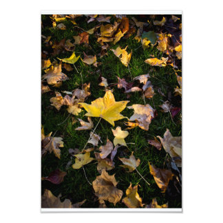 "Large Autumn Leaf on Grass - 3.5"" x 5"" Personalized Invites"