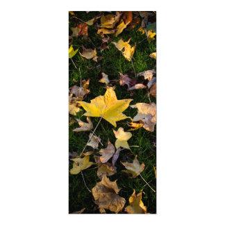 "Large Autumn Leaf on Grass  - 4"" x 9.25"" Card"