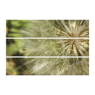 Large Dandelion Triptych Wall Art Gallery Wrapped Canvas