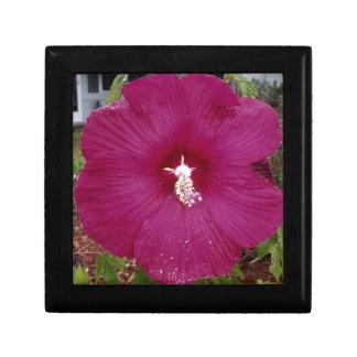 large dark red Hibiscus Gift Box