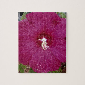 large dark red Hibiscus Jigsaw Puzzle
