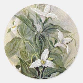 Large-Flowered Wake-Robin Wildflower Round Sticker