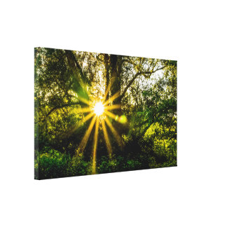 Large Forest Print Canvas