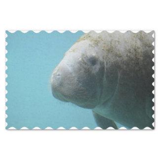Large Manatee Underwater Tissue Paper