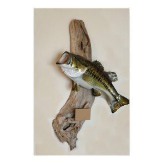 large mouth bass flyer