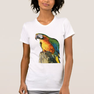 Large Orange and Teal Parrot on a Stump T-Shirt