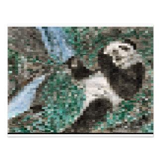 Large Panda Pla y Blurred Mosaic Invite