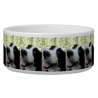 Large Pet Food Bowl with Border Collie