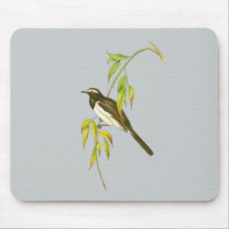 Large Pied Wagtail Mouse Pad