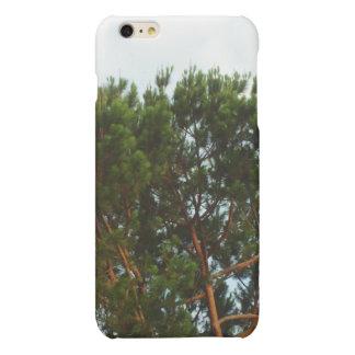 Large Pine Tree iPhone Case