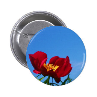 Large Red Poppy Photo Button