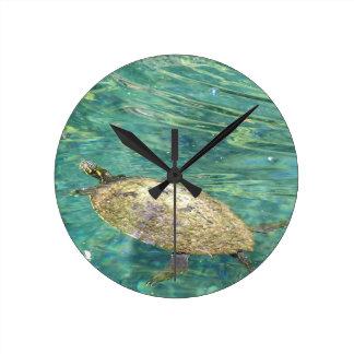 large river turtle swimming round clock