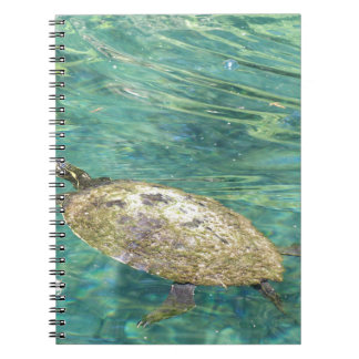 large river turtle swimming spiral notebook