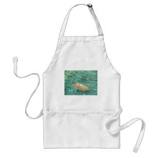 large river turtle swimming standard apron