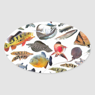 Large-sized tropical fish oval sticker