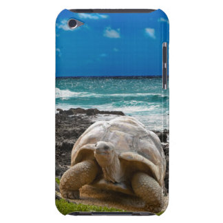 Large turtle at the sea edge barely there iPod case