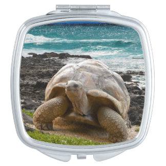 Large turtle at the sea edge mirror for makeup