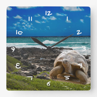 Large turtle at the sea edge square wall clock