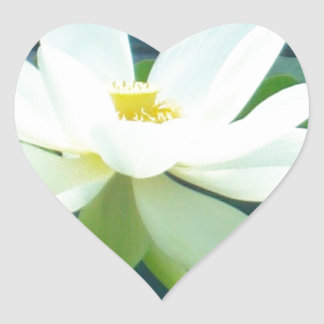 large white lily heart sticker