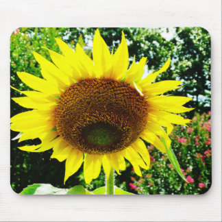 Large yellow Sunflower Mouse Pad