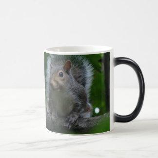 larger squirrel magic mug