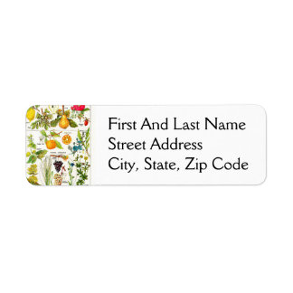 Larousse Fruit Orange Pear Grape Painting Return Address Label