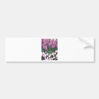Las Vegas Butterfly Garden DIY add TEXT Wisdom fun Bumper Sticker