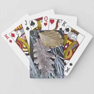 Last Days of Autumn - Card Deck