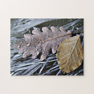 Last Days of Autumn - Puzzle
