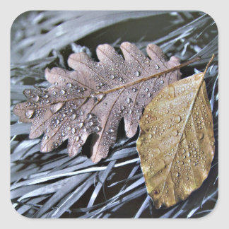 Last Days of Autumn - Sticker