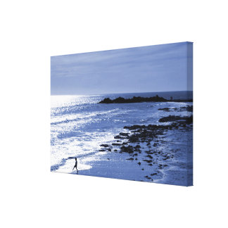 Last Dip of the Day Canvas Print