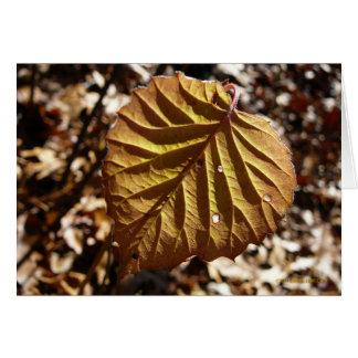 Last Leaf Greeting Card