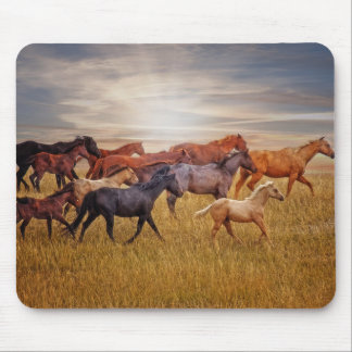 Last Light's Run Mousepad