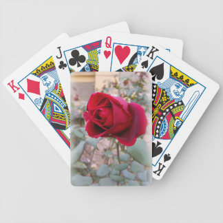 last red rose bicycle playing cards