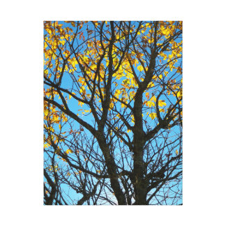 Late Autumn Gallery Wrapped Canvas