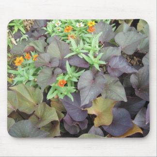 Late Summer Foliage Mousepad