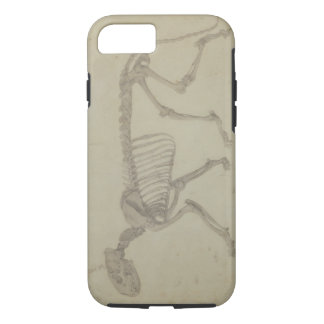 Lateral View of a Tiger Skeleton, finished study f iPhone 7 Case