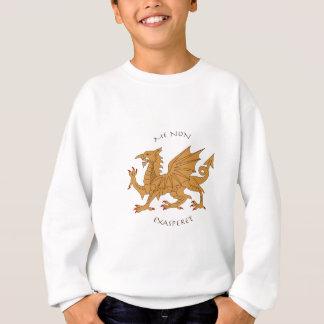 Latin mottos and heraldry sweatshirt