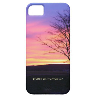 Latin Quote LIve in the Moment iPhone 5 Covers